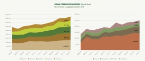 World nut production has scored 45% increment in last 10years (Since 2009)