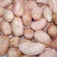 Raw Groundnuts From Serres Greece